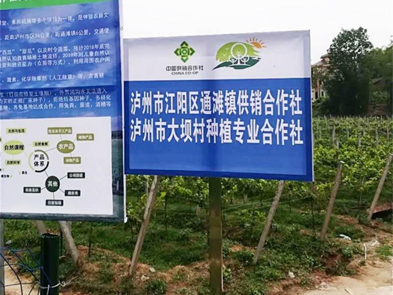 瀘州市江陽區通灘鎮供銷合作社、瀘州市大壩村種植專業合作社監控系統安裝